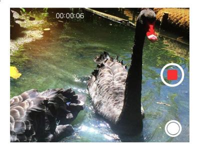 iphone video kaydı