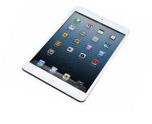 iPad Mini Teknik Servis