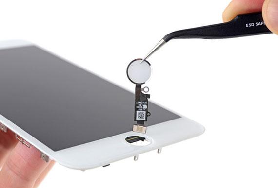 iPhone 8 Plus Ana Ekran Tuşu Değişimi